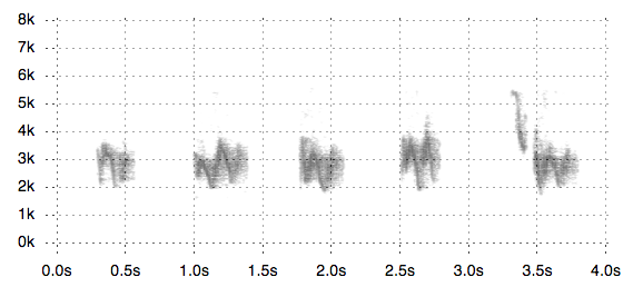 Visualizing Bird Songs with Web Audio - Jim Vallandingham